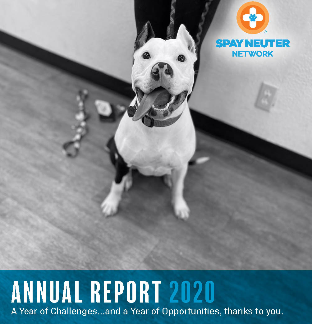 2020-SNN-Annual-Report-COVER1